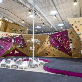 Crux climbing center austin rock climbing and bouldering gym